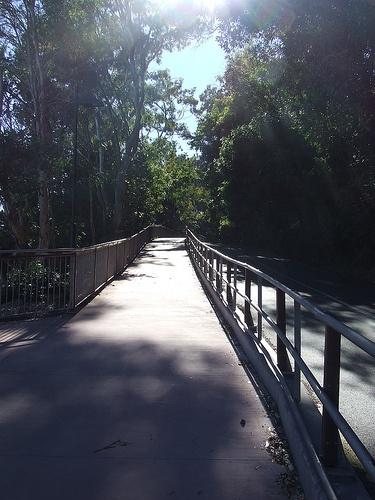 noosa nat park boardwalk on little cove