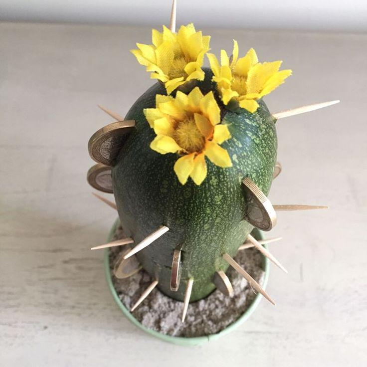 25 beste idee n over cactus bloem op pinterest woestijnbloemen cactus en cactussen tuin - Maak een grind steegje ...