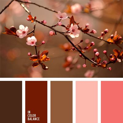 color chocolate, color melocotón, colores otoñales, colores para una boda, colores para una boda de otoño, elección del color, gama de colores para boda, marrón oscuro, marrón rojizo, paleta de colores para una boda, rosado oscuro, rosado pálido, tonos marrones.