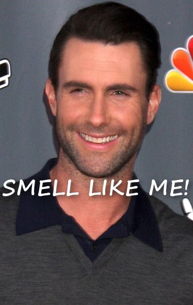 Channel the man People Magazine voted '2013's Sexiest Man Alive' by wearing Adam Levine's signature scent....