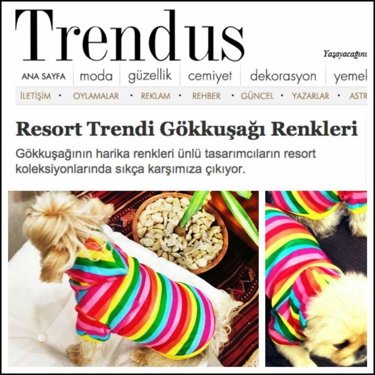 kemique.com/list.php köpek minderleri köpek minderi köpek yatakları köpek yatağı petshop köpek malzemeleri kopek kıyafetlerı köpek kıyafetleri kopek elbıselerı köpek elbiseleri kopek elbise köpek elbise dog clothes köpek modası kopek modası dog fashıon köpek için kıyafet kopek ıcın elbise köpek için elbise köpek paltosu köpek montu köpek ceketi köpek tişörtü KÖPEK KIYAFETİ KÖPEK ELBİSESİ KÖPEK ÜRÜNLERİ KÖPEK ÜRÜNÜ KÖPEK GİYİM www.kemique.com