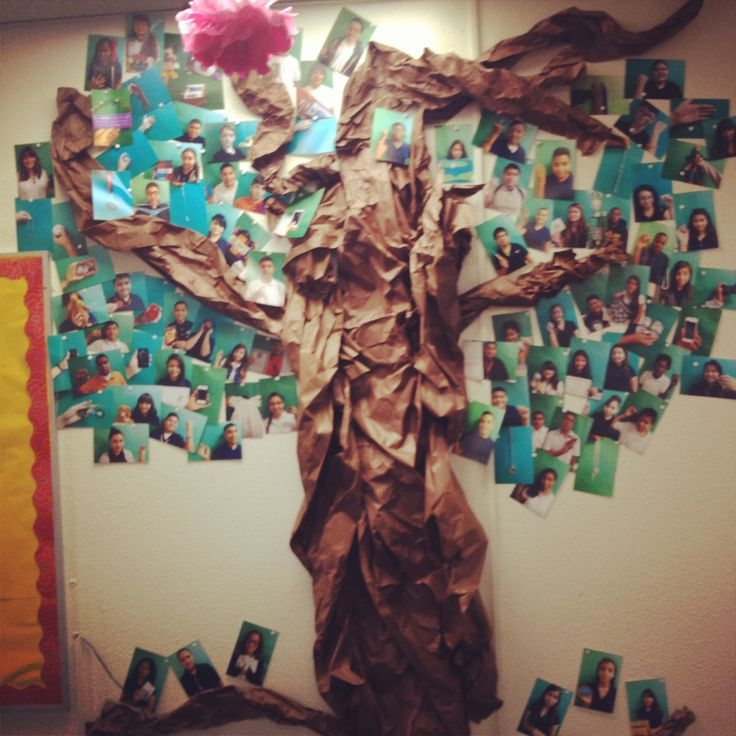62 Best Images About Classroom Tree Display Ideas On