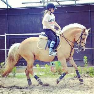Instagram photo by marcelinamatyszczak - #my #little #princess #last #training #with #my #pony #Pchełka #i #love #my #little  #girl