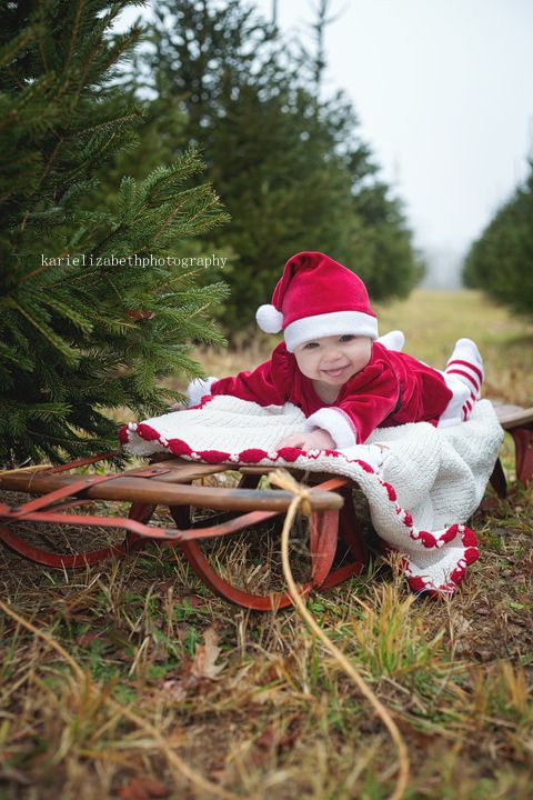 Kari Elizabeth Photography Christmas Tree Farm