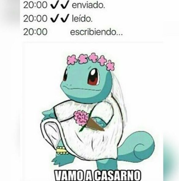 meme squirtle vamo a casarno