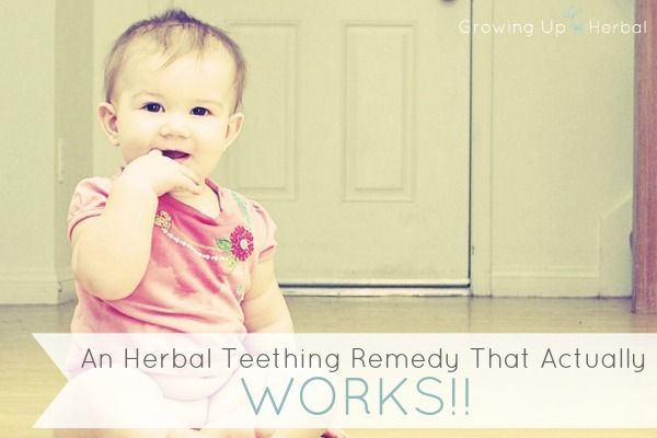 An Herbal Teething Remedy That Actually Works | GrowingUpHerbal.com - having a teething baby is no fun. Here's a natural, herbal remedy that actually provides relief!