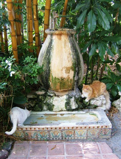 Ernest Hemmingway's Cat Watering Fountain. Made from an old Urinal from Sloppy Joe's, a Bar he once Frequented. Stone Mansion on Whitehead Street, Key West, Florida.