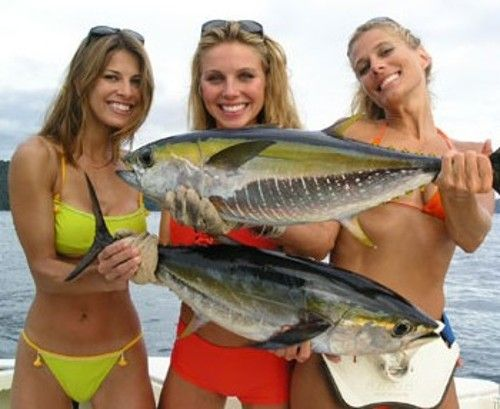 Reel sexy fishin for Deep sea fishing miami fl