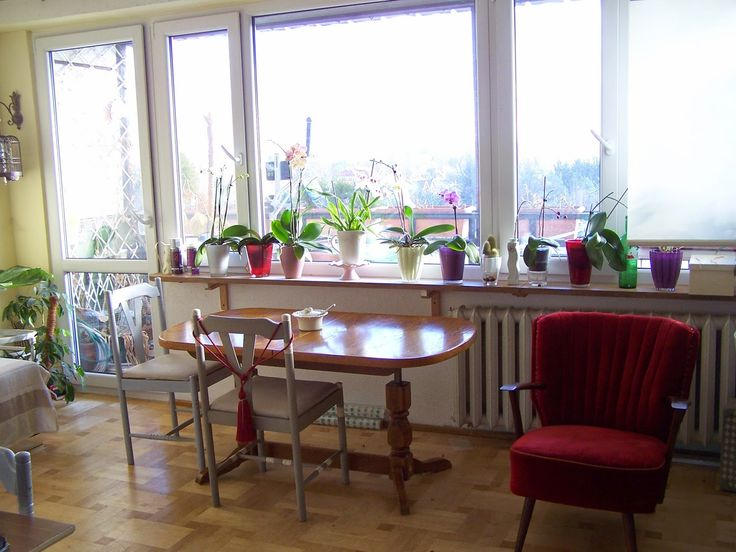 salon w słońcu