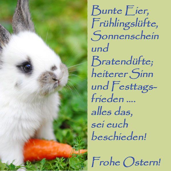 Ostersprüche: Die schönsten Ostergrüße zum Nachlesen – Alina- Maria Dohle