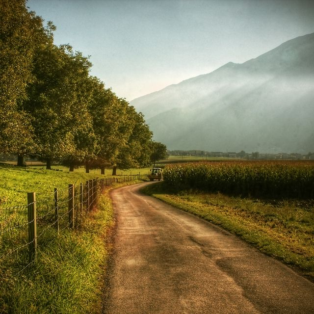 Best 25 Country Scenes Ideas On Pinterest Farm Pictures
