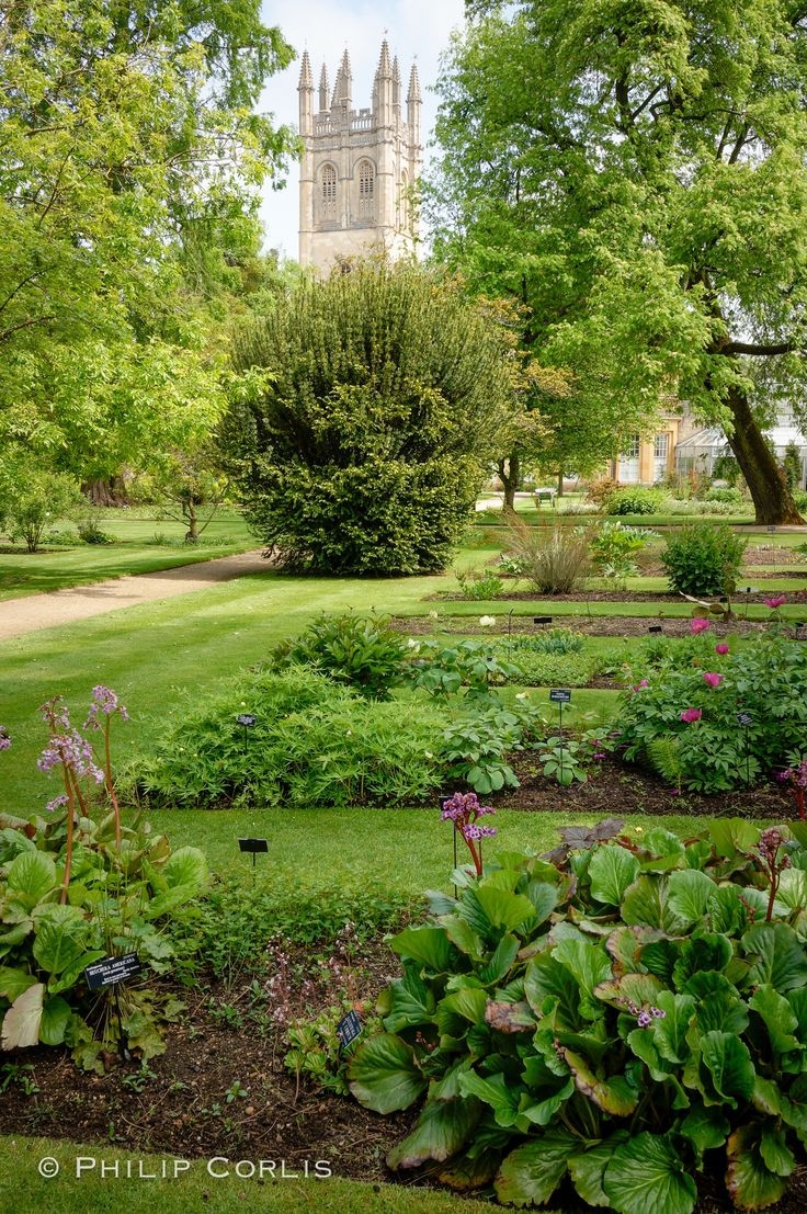 Oxford Botanical Gardens: Oxford, England.