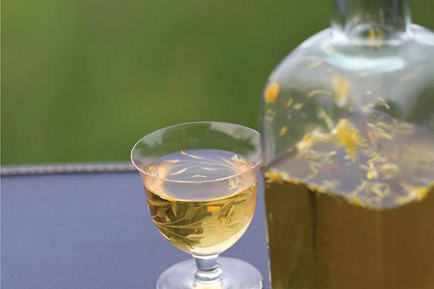 Find the recipe for Dandelion Wine  and other  recipes at Epicurious.com