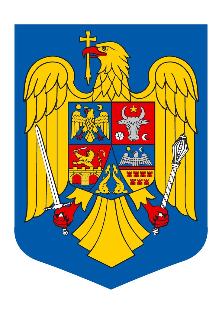 The coat of arms of Romania contains multiple symbols with different meanings. Thus, the eagle stands for Wallachia, the province that is central to Romania's history. The eagle is considered a symbol of Latinity as well as of courage, determination and power. On the bird's chest there are traditional crests of Romania's major provinces (Top-left is Wallachia's, top-right is Moldavia, bottom-left are Banat and Oltenia and the two dolphins symbolise Dobrogea region - along the Black Sea).