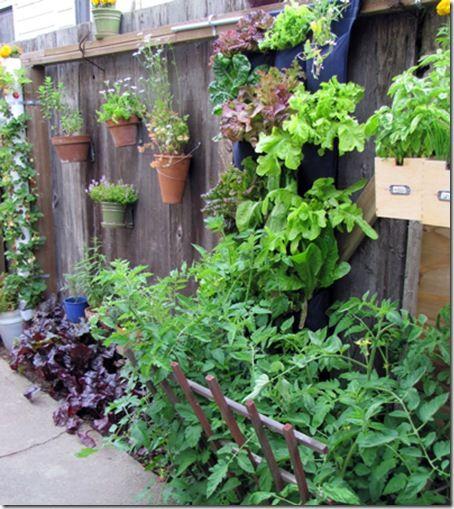 9 Vegetable Gardens Using Vertical Gardening Ideas: 53 Best Images About Side Yard Gardening On Pinterest