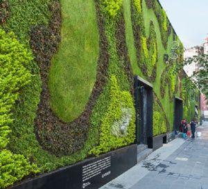 Las paredes vegetales aíslan a los edificios del ruido de las ciudades
