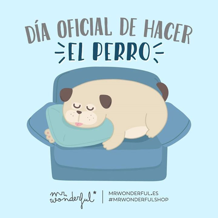 Día oficial de hacer el perro Mr Wonderful