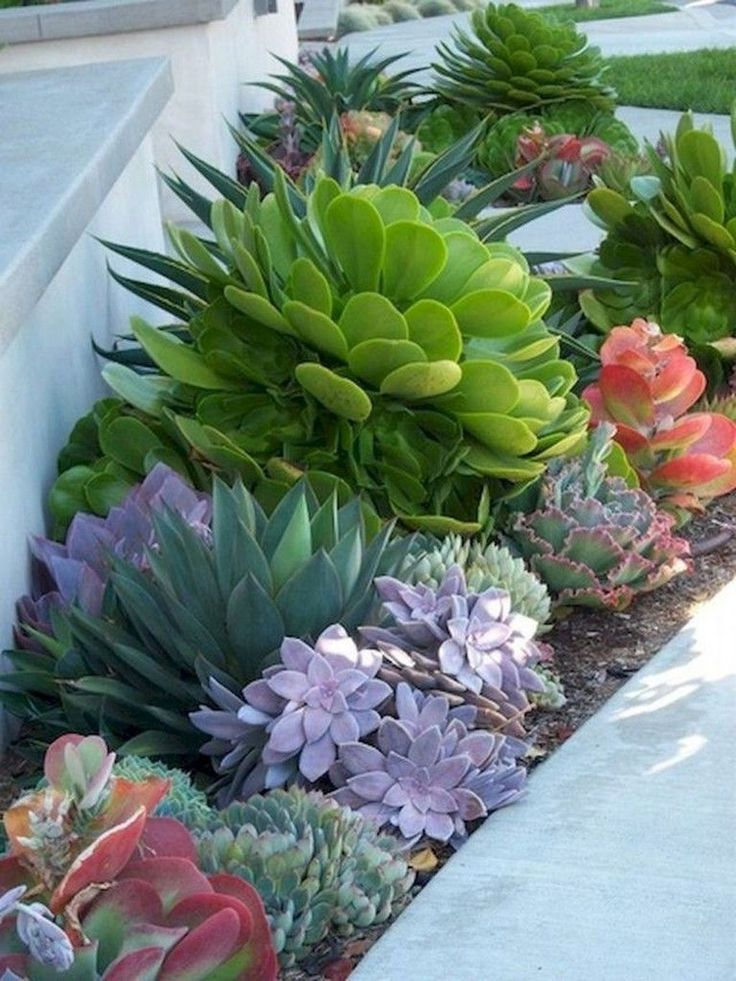 Cheap landscaping ideas for your front yard that will inspire you (34