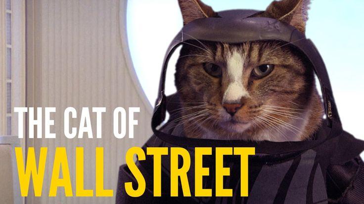 Das norwegische Künstlerkollektiv PistolShrimps stellen ihre Videobearbeitungskünste unter Beweis und zeigen uns Katzen als Darsteller in bekannte Filmszenen. Das ist meistens sehr, sehr lustig, noch öfter niedlich und schlicht grossartig… :)
