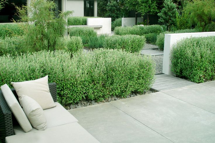 Acid etched concrete paving provides a smooth surface and contrasts with the coarse gravel mulch and fine gravel paving.