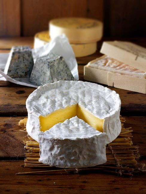 Traditional coulommier French cheese