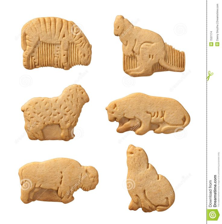 17 Best images about Aa Animal Crackers on Pinterest ...