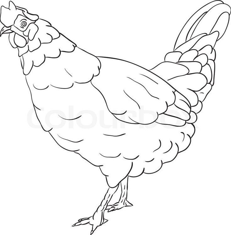 Vector - hen isolated on background | Vector | Colourbox on Colourbox