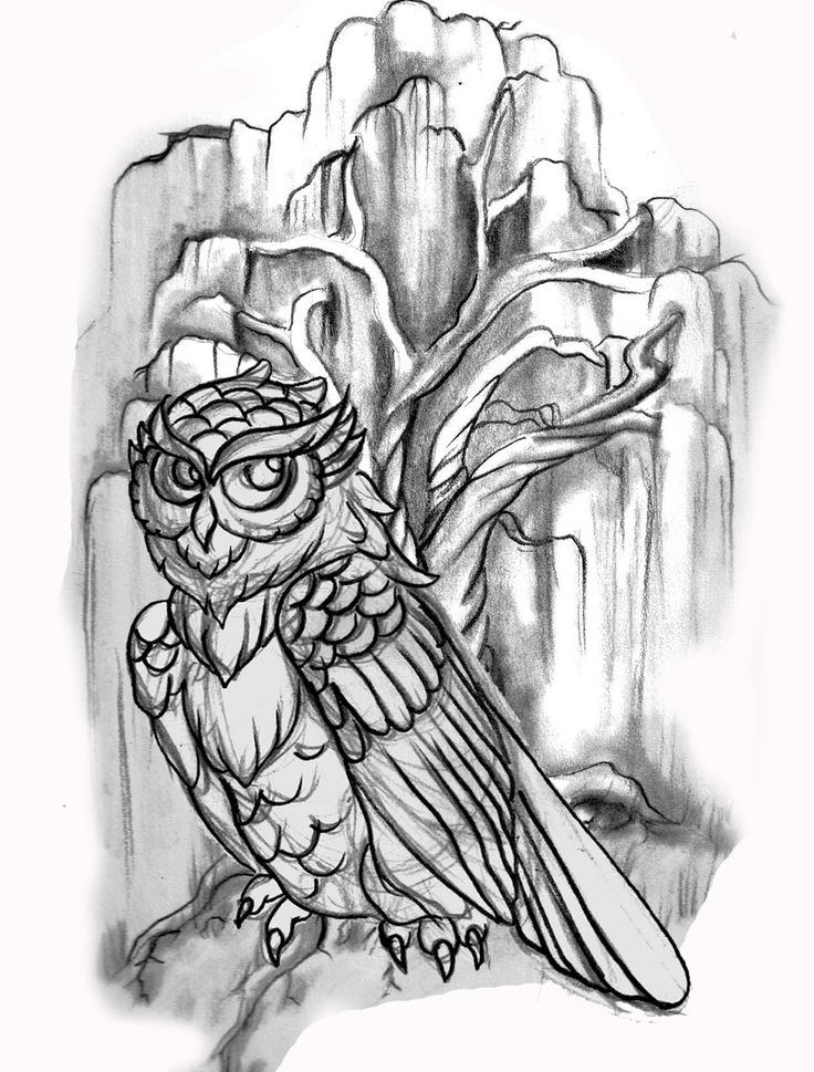 Owl Line Drawing Tattoo : Tattoo flash line drawing images