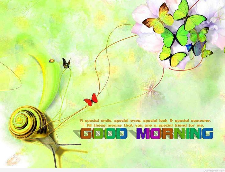 Good Morning hd Wallpaper images wishes Download Free 1600×1227 Good Morning Hd Wallpaper (54 Wallpapers)   Adorable Wallpapers