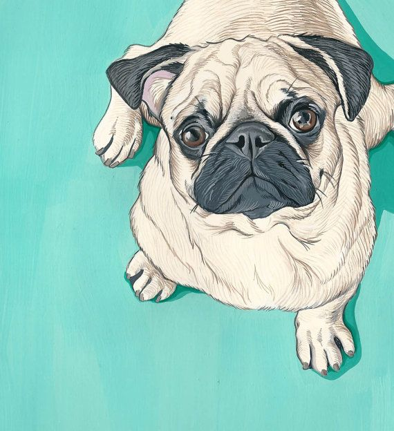 Custom pet portrait hand painted on card-stock of your Furry or Feathered Friends. Each portrait is carefully and lovingly hand drawn and painted