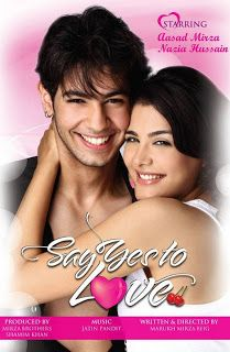 Say Yes To Love (2013) Watch Hindi Movie Online
