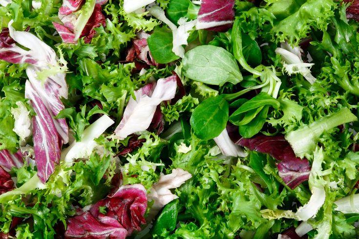 So gesund sind die unterschiedlichen Salatsorten - Feldsalat, Eisbergsalat…