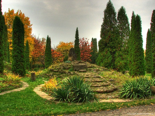 Iasi Botanical Gardens  Romania