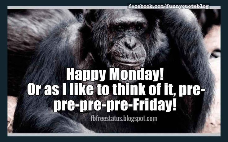 Happy Monday!  Or as I like to think of it, pre-pre-pre-pre-Friday! , Funny Monday Memes.