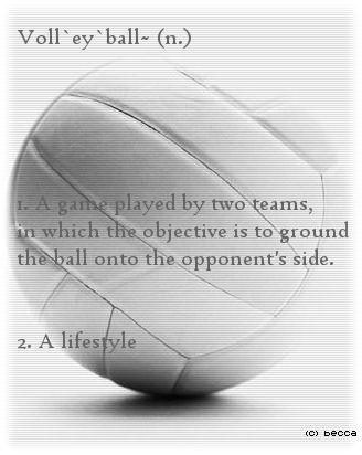 love. so true. #volleyball #sportquotes #volleyballquotes