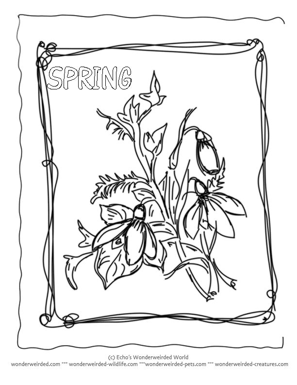 Spring Flower Coloring Pages From Our Nature Activities For Kids Free To Print With Glower Sheets And A Z Of Flowers Little Snowdrop Sprig