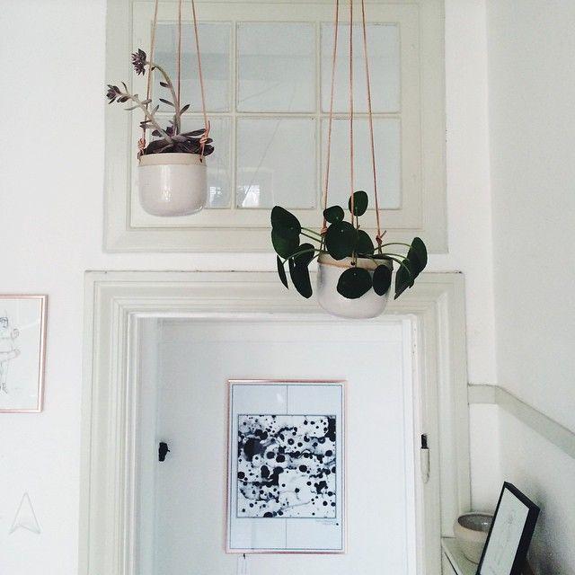 Hængende urtepotter designet af Julie Damhus Foto: Finderskeepers