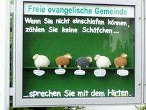 Schaukasten - feg-breidenbach