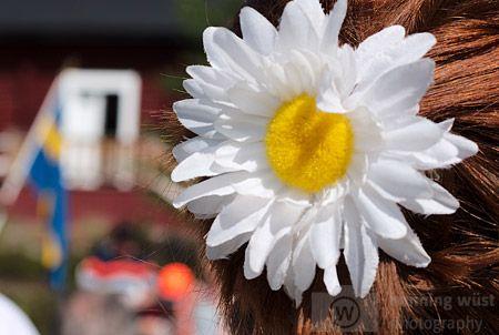 Lasst Blumen sprechen - Sonnenblume zum Nationalfeiertag mit schwedischer Flagge im Hintergrund