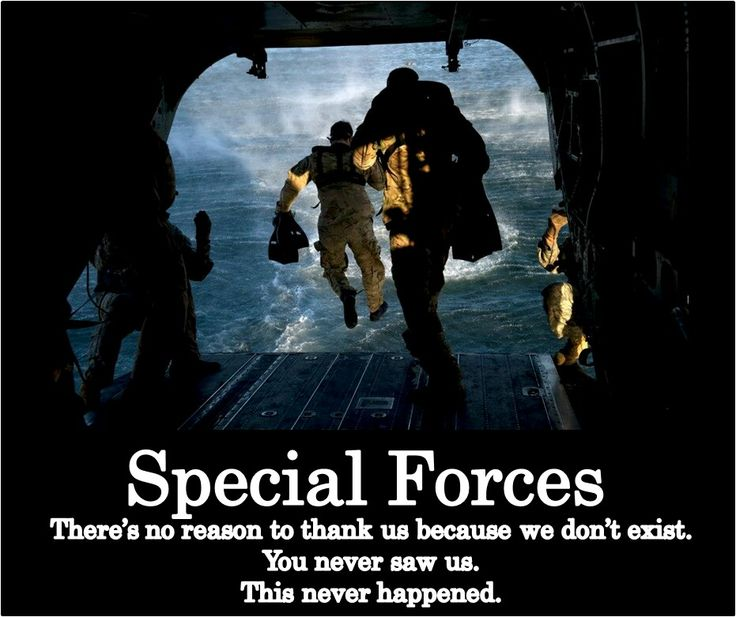 Special Forces - The Silent Professionals - also known as the Green Berets. They are part of the US Army. SEALS, Rangers, ForceRecon, Delta Force are often mistakenly called Special Forces when they are all actually Special Operations (Spec Ops) forces. Special Forces will never complain about the mis-identity, but they really deserve better.