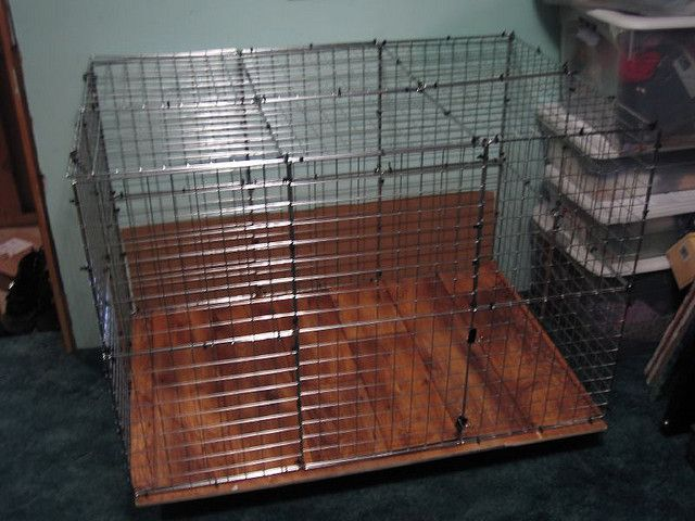 25 best images about diy rabbit cage on pinterest amigos for Easy diy rabbit cage budget