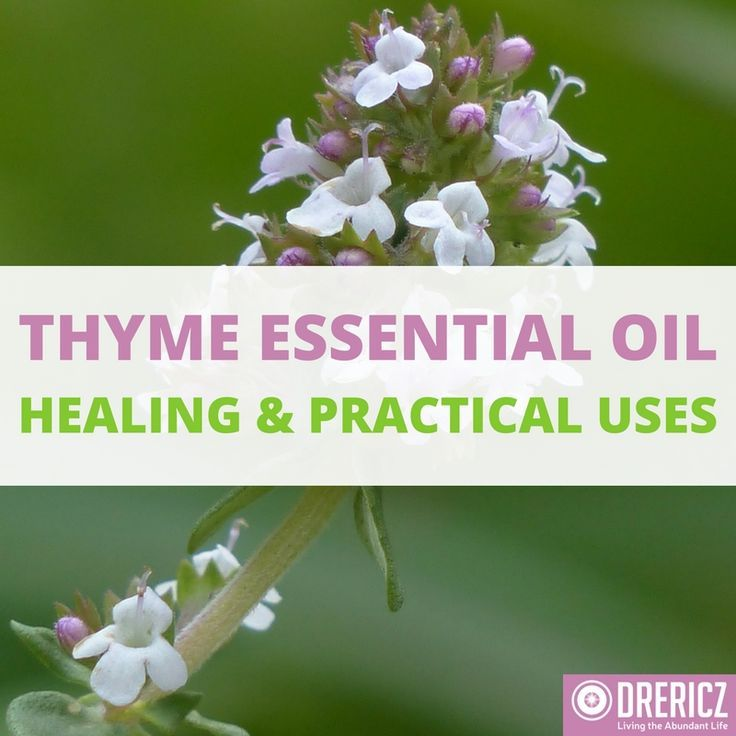 The therapeutic benefits of thyme essential oil are oftentimes overshadowed by its practical uses. But don't be mistaken, it's a powerful healer!
