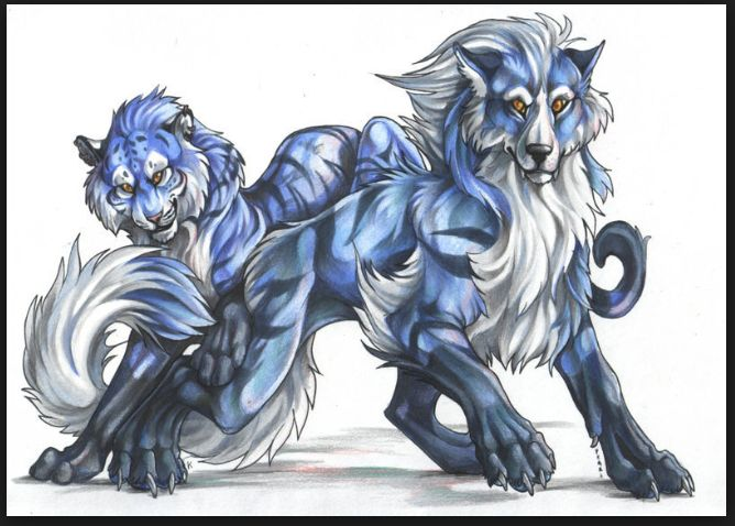 animated blue tigers