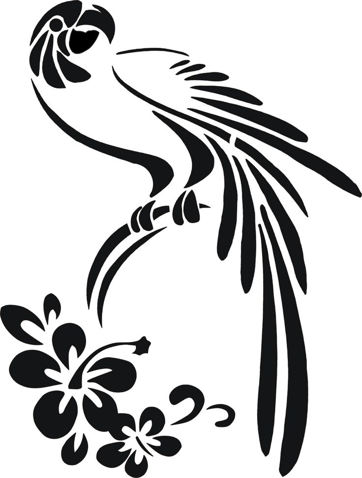 Птицы ивановской области фото и названия результате