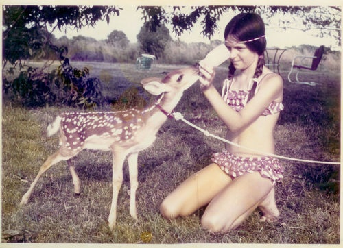 .: Animal Pictures, Girls Generation, Vintage Animal, Art, Feeding Vintage, Deer Baby, Deer Ladies, Hello Inspiration, Photography Ideas