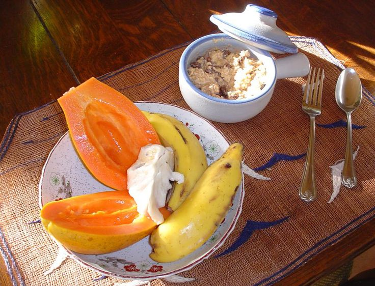 The Basic Gerson Therapy Recipes