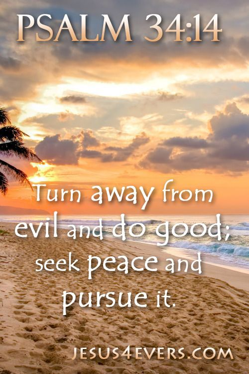 Psalm 34:14 (ESV) -  Turn away from evil and do good;     seek peace and pursue it.