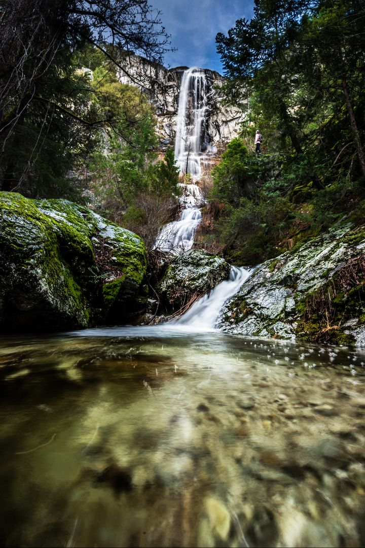 Mount Shasta's Best Day Hikes