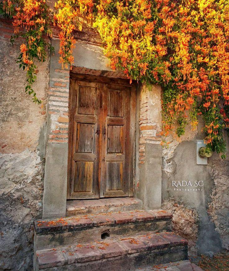 Puerta clasica de Alamos, Sonora