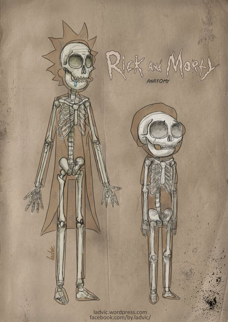 Rick and Morty Anatomy by ladvic-2014